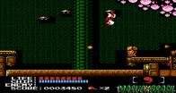Este é um dos exclusivos obscuros do NES mais fantástico, criado pela empresa que 5 anos depois fez Clock Tower e acreditado pela HAL Laboratory, a matriz dos jogos Kirby, Earthbound e Super Smash Bros. Em Kabuki, o jogador controla Scott, um cara muito maneiro que detona seus inimigos usando a cabeleira através do ano de 2056. É um jogo de ninja do futuro com elementos macabros cheio de plataformas, armas para coletar e sub itens para arremessar de longe, e sem contar os movimentos do personagem que são muito rápidos e trilha sonora empolgante que ajuda a chegar ao fim em uma tarde só.